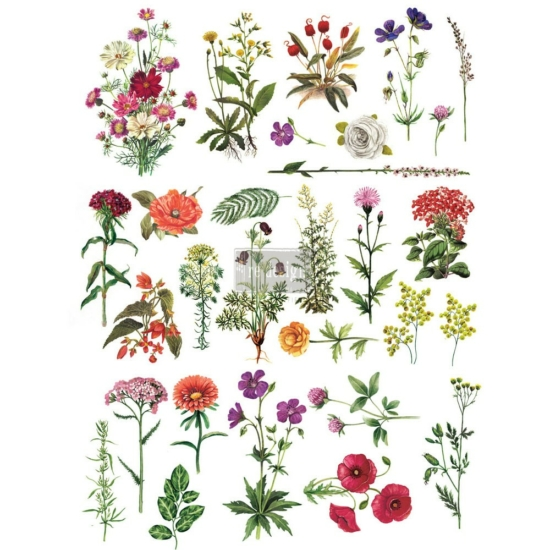 """Redesign Décor Transfers® - Floral Collection 24""""x 34"""""""