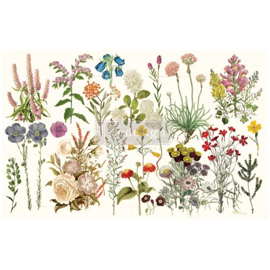 "Redesign Decoupage Décor Tissue Paper - Wild Herbs - 1 lap, 19""x30"""