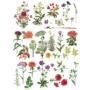 """Kép 1/7 - Redesign Décor Transfers® - Floral Collection 24""""x 34"""""""