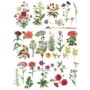 """Picture 1/7 -Redesign Décor Transfers® - Floral Collection 24""""x 34"""""""