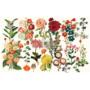Kép 1/2 - Redesign Decoupage Vastag rizspapír - Forest Garden